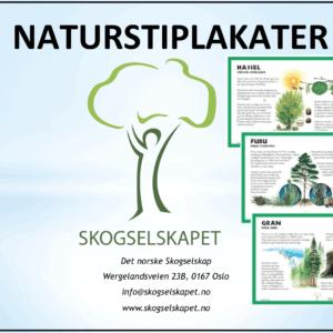Naturstiplakater