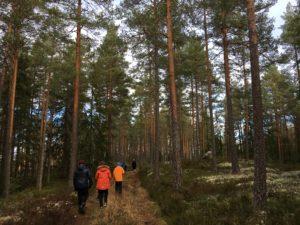 skog skole tur