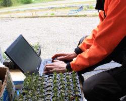Trøndergran gir ny innsikt innenfor epigenetikken