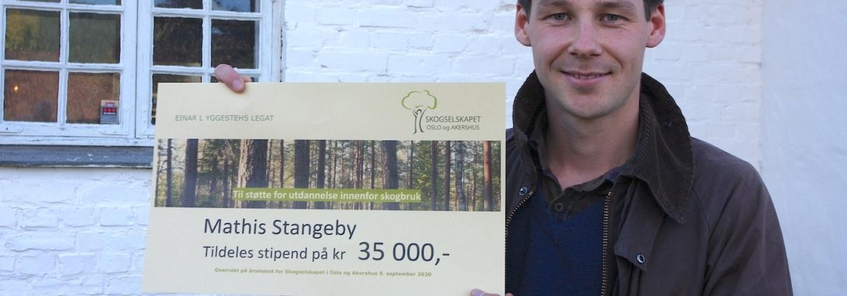 Mathis Stangeby
