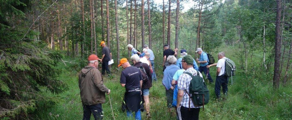 https://www.skogselskapet.no/wp-content/uploads/2020/08/DSC02988-1024x423.jpg